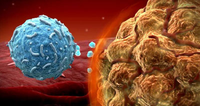 anti-pd1-cancer-therapy.