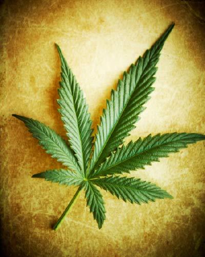 marijuana-nerve-pain-treatment-options.
