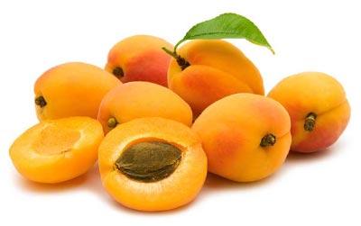 b17-cyanide-apricot-seed-pits.