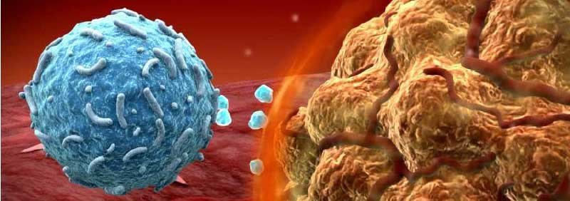 Anti-pd-1-cancer-treatment-immunotherapy.