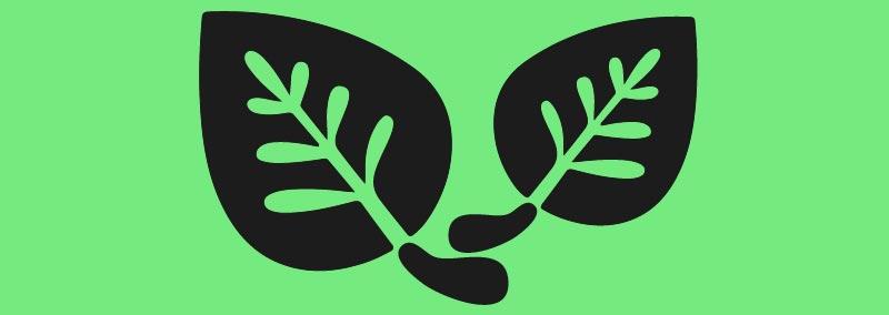 Kratom-Cancer-Pain-Treatment-Leaves.